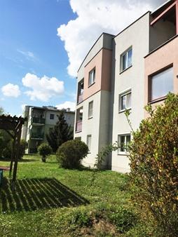 Immobilie von Schönere Zukunft in 2225 Zistersdorf, Präs.-Ferdinand-Reiter-Hof 3 / TOP 9 #4