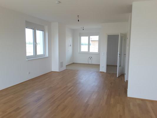 Immobilie von Schönere Zukunft in 2063 Zwingendorf, Nr. 347 / RH 1 #7