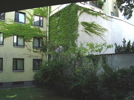 Immobilie von Schönere Zukunft in 1060 Wien, Webgasse 40 / Stiege 2 / TOP 2 #6
