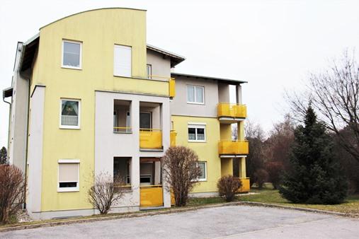 Immobilie von Schönere Zukunft in 2225 Zistersdorf, Präs.-Ferdinand-Reiter-Hof 3 / TOP 9 #5