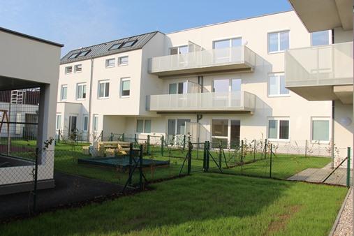 Immobilie von Schönere Zukunft in 2104 Spillern, Stockerauer Straße 20 / Stiege 2 / TOP 1 #1