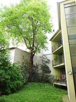 Immobilie von Schönere Zukunft in 1060 Wien, Webgasse 40 / Stiege 2 / TOP 2 #2