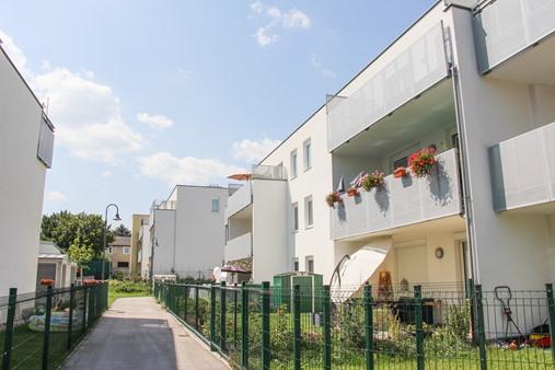 Immobilie von Schönere Zukunft in 3452 Heiligeneich, Wiener Landstrasse 11 / Stiege 3 / TOP 3 #7