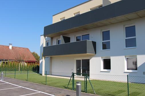 Immobilie von Schönere Zukunft in 3463 Stetteldorf am Wagram, Haarhüttengasse 4 / TOP 9 #4